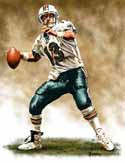 11 X 14 Dan Marino Miami Dolphins Limited Edition Giclee Series #1