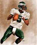 11 X 14 Donovan McNabb Philadelphia Eagles Limited Edition Giclee Series #1