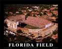 8 X 10 Griffin Stadium Florida Gators Aerial Print