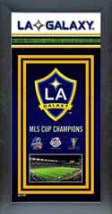 Framed Los Angeles Galaxy Championship Banner