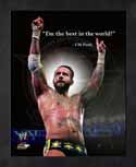 Framed CM Punk WWE Pro Quotes