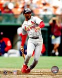 Ozzie Smith St. Louis Cardinals Photo