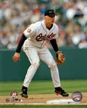 Cal Ripken Jr. Baltimore Orioles Photo