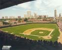 Wrigley Field Chicago Cubs Photo