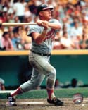 Boog Powell Baltimore Orioles Photo