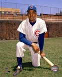 Billy Williams Chicago Cubs Photo