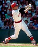 Carlton Fisk Boston Red Sox Photo