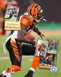 Chad Johnson Cincinnati Bengals Photo
