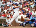 Ryne Sandberg Chicago Cubs Photo