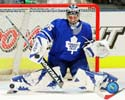 Vesa Toskala Toronto Maple Leafs Photo
