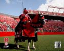 The Scarlet Knight Rutgers Scarlet Knights Photo