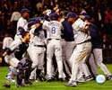 2008 ALDS Champs Tampa Bay Rays Photo