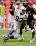 Dwight Freeney Indianapolis Colts Photo