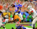 Percy Harvin Florida Gators Photo