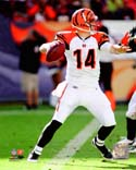Andy Dalton Cincinnati Bengals Photo