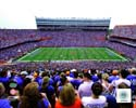 Ben Hill Griffin Stadium Florida Gators Photo