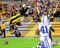 Antonio Brown Pittsburgh Steelers Photo