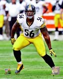 LaMarr Woodley Pittsburgh Steelers Photo