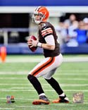Brandon Weeden Cleveland Browns Photo