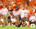 Sammy Watkins Clemson Tigers Photo