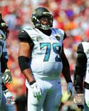 Red Bryant 2014 Action Jacksonville Jaguars Photo