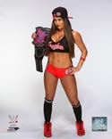 Nikki Bella with the Divas Championship Belt 2014 Posed WWE Photo