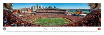 Cincinnati Bengals Panoramic Picture - Paul Brown Stadium Panorama