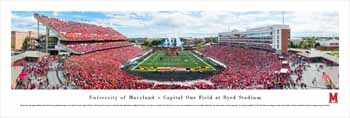 Maryland Terrapins Panoramic Picture