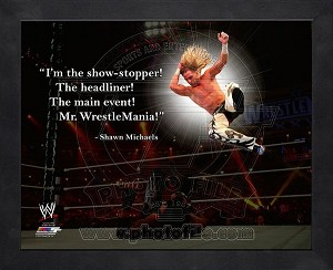 Framed Shawne Michaels WWE Pro Quotes