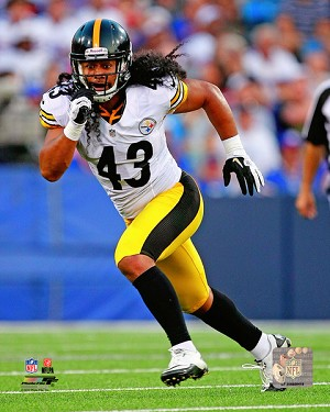 Troy Polamalu Pittsburgh Steelers Photo