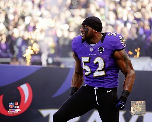 Ray Lewis Baltimore Ravens Photo