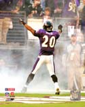 Ed Reed Baltimore Ravens Photo