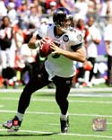 Joe Flacco Baltimore Ravens Photo
