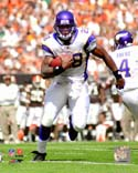Adrian Peterson Minnesota Vikings Photo