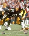 L.C. Greenwood Pittsburgh Steelers Photo