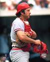 Johnny Bench Cincinnati Reds Photo