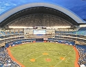16 X 20 Rogers Centre Toronto Blue Jays Photo