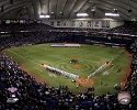 16 X 20 Metrodome Minnesota Twins Photo