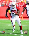 Beanie Wells Arizona Cardinals Photo
