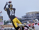 Martavius Bryant Pittsburgh Steelers Photo